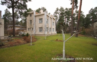 Bergenas - Image