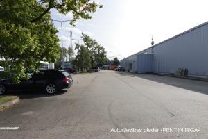 Ulmaņa gatve - Attēls