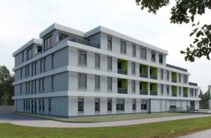 Gulbju - Image