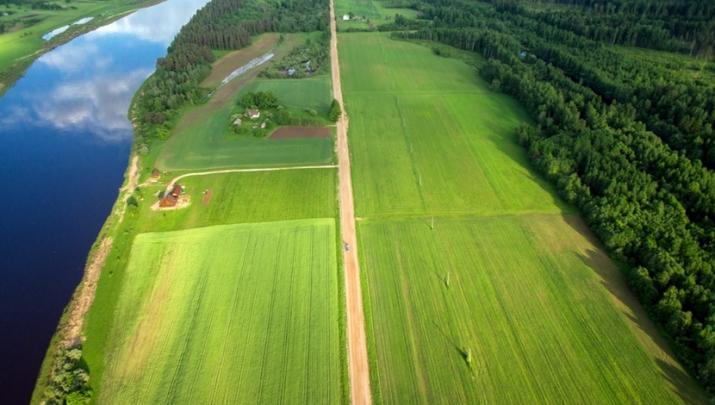 Объявление. Tiek pārdota 1,55ha plaša zeme Daugavas krastā, tiešā šosejas P75 tuvumā. Lauksaimniecībā Цена: 77000 EUR Foto #2