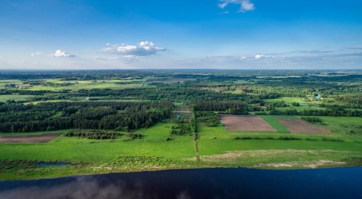 Объявление. Tiek pārdots 4,7ha plašs zemes gabals, kurš robežojas ar Daugavas upi, tiešā šosejas A6 Цена: 183000 EUR Foto #2