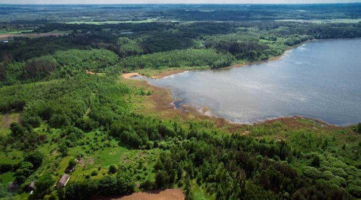 Объявление. 3 земельных участка продаются единым блоком общей площадью 31,2 га (312 000 м2) на берегу Цена: 129000 EUR Foto #3