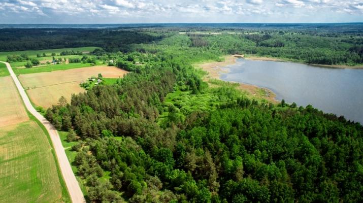 Объявление. 3 земельных участка продаются единым блоком общей площадью 31,2 га (312 000 м2) на берегу Цена: 129000 EUR Foto #2