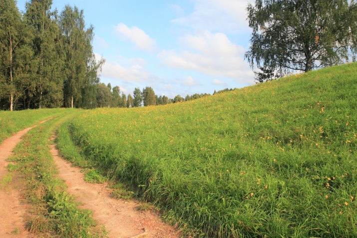 Объявление. Tiek pārdota 13ha (130000m2) plaša zeme ar mežu/grants kalnu (~60 000m3) - piemērots grants Цена: 55000 EUR Foto #1