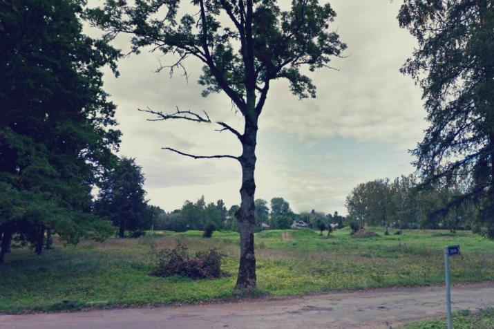Sludinājumi. Pārdod zemes gabalu 5.21 ha platībā Mazsalacā blakus Baznīcas un Torņu ielai, ērta piebraukšana. Uz Cena: 45000 EUR Foto #2