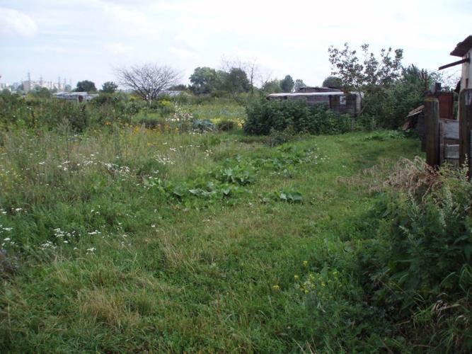Sludinājumi. Pārdod zemes gabalu 2.28 ha platībā Daugavas krastā. Saskaņā ar attīstības plānu zemes gabals Cena: 25000 EUR Foto #4