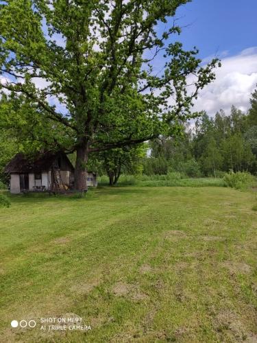Sludinājumi. Piedāvājumā lielisks lauku īpašums Sēlijas pusē! Pilsētas komforts apvienojumā ar lauku klusumu, Cena: 78000 EUR Foto #5