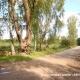 Pārdod zemi, Mūkupurva iela - Attēls 2